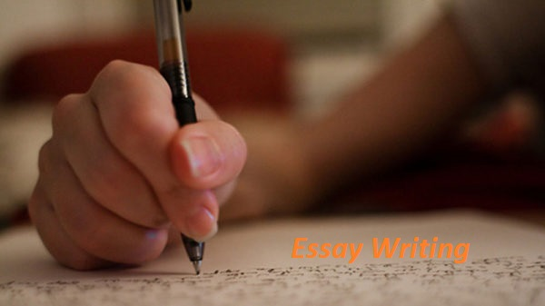 Learn to Write an Essay